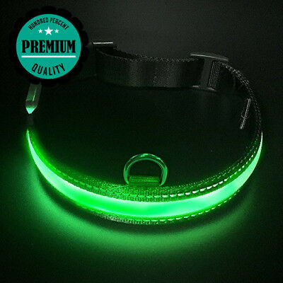 LED Dog Collar, LaRoo™ Flashing Safety Collar Nylon Luminous Night Band with...