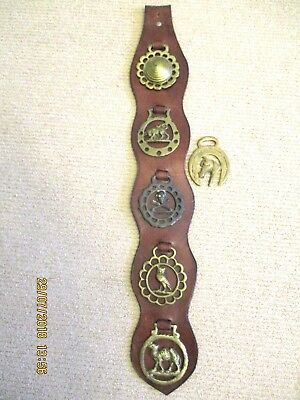~Vintage Leather Display With 6 Horse Brass/brasses - Gc~~