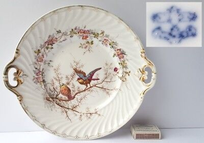 Porcelain Platter/ Tray/Plate Bird Marked um 1900 L844