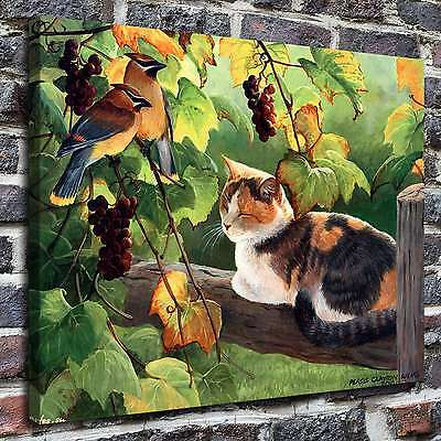 "12""x16""Sleeping cat Paintings HD Print on Canvas Home Decor Wall Art Pictures"