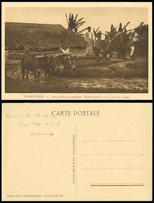 Cochinchine Old Postcard Indians Cattle MILL Sesame Oil
