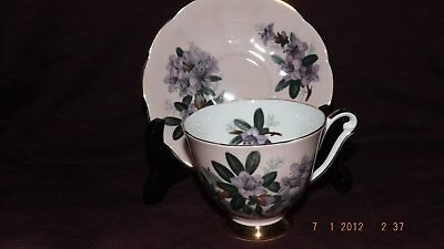 Blush Pink Queen Anne Floral Footed English Bone China Cup & Saucer