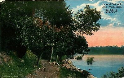 Lake Washington, Seattle, WA, Seward Park, Unused Vintage Postcard e4042