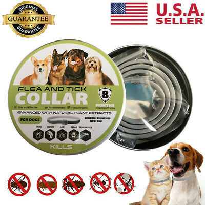 Dewel Flea and Tick Collar for Small Medium Large Dog 8 Month USA