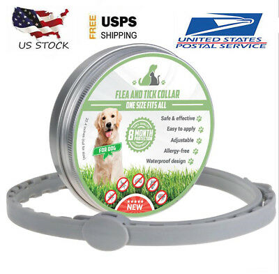 Dewel Flea and Tick Collar for Medium Large Dog 8 Month Protection D