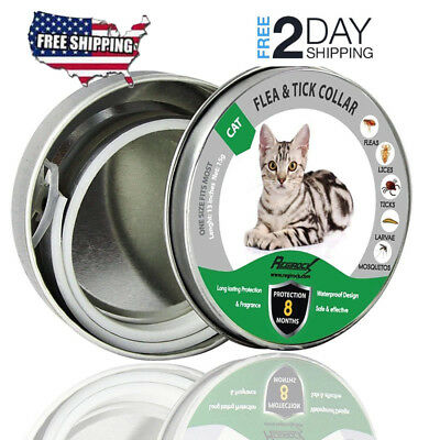 DEWEL Flea and Tick Collar for Small Pet Cats Dog Anti Insect 8 Month Protection