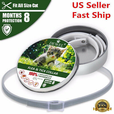 Dewel Flea and Tick Collar For Small Cat Dog Puppy 8 Month Protection
