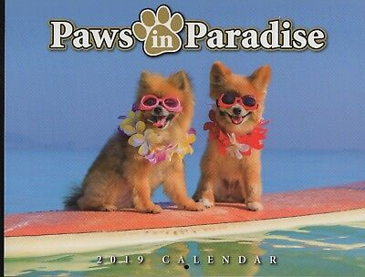 2019 Hawaii Wall Calendar Dogs Paws in Paradise - 12 months US cities Free shipp
