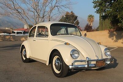 1967 Volkswagen Beetle - Classic  1967 Volkswagen Beetle California car no rust 1910cc engine!!