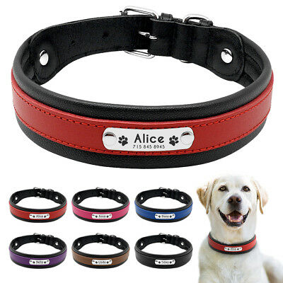 Personalised Dog Collar Soft Padded Engraved ID Name Free for Big Dogs Labrador