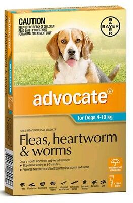 Advocate for Dogs 4-10kg 1 Pack with NO BOX