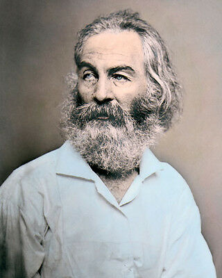 "WALT WHITMAN WRITER POET & JOURNALIST 8x10"" HAND COLOR TINTED PHOTOGRAPH"