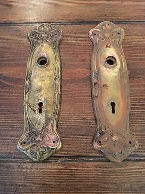 Antique Rosey Rose Brass Door Back Plate Set