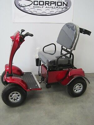 Golf Cart/car/buggy Scooter With Roof Sg8