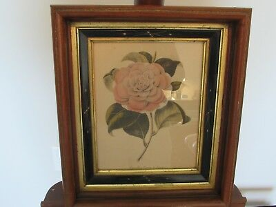 """Antique East Lake Victorian Deep Walnut Gilt/Ebony Etched Picture Frame 12""""X14"""""""