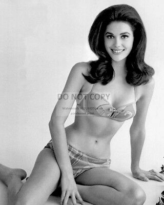 Actress Linda Harrison Pin Up - 8X10 Publicity Photo (Dd-137)