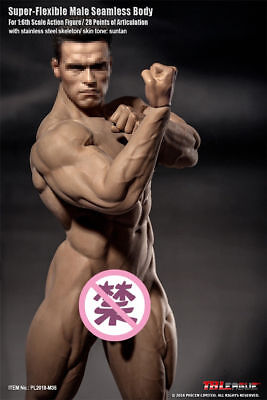 TBLeague 1/6 PL2018-M35 Super Flexible Male Seamless Bodybuilder Body