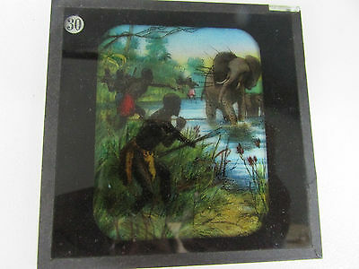 Africans Hunting Elephant Lantern Glass Projector Slide Photograph