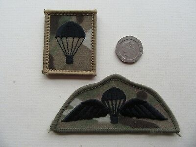 Airborne Forces, Para Regt. wings + 'lightbulb',  vlcro backed MTP Para Wings.