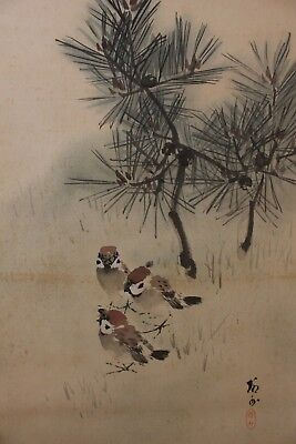 A09H0 ~Cute Sparrows & Pine Tree~ Japanese hanging scroll