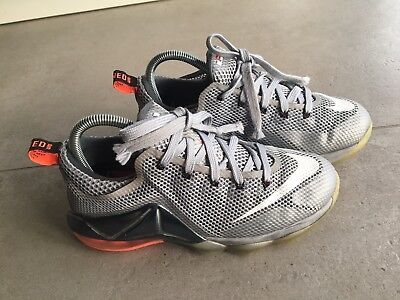 low priced 85751 b456c Nike LeBron James Earned 23 Grau Gr. 38 Basketball Schuhe Sneakers Guter  Zustand