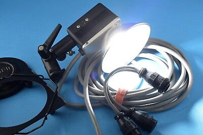 Norman LH-2 400WS Flash Head w/20ft. Cable & Xtras Exc