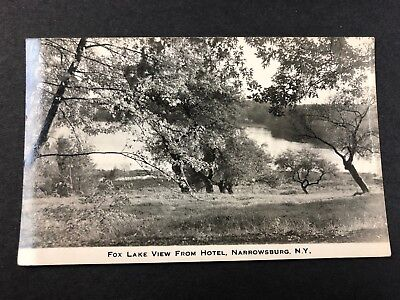 Narrowsburg NY View of Fox Lake from Hotel Antique Photo Postcard rppc Hillig