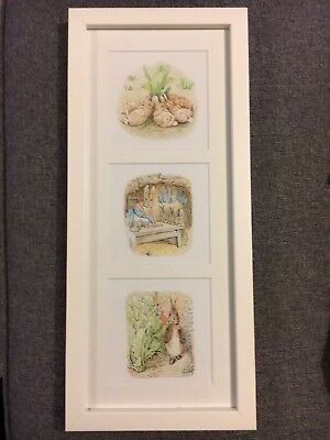 Peter Rabbit and Friends Picture Frame