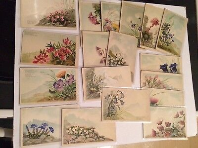 Lot of 18 Vintage Postcards, Wild Flowers, Edition Photoglob