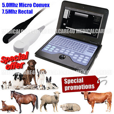 Veterinary Ultrasound Scanner Laptop Machine For Horse Cattle Dog Cat Caw Pig