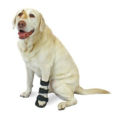 Walkin' Pet Front Splint for Dogs Canine Leg Splint & Foam Inserts Custom Fit