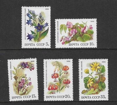 RUSSIA 1988 Deciduous Forest Flowers, mint set of 5, MNH MUH