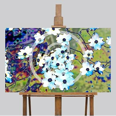 Large Wall Art Canvas Picture Print 46 x 28 Lovely Dogwood Tree Flower Garden