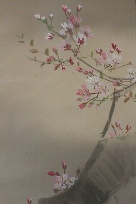 J00R3 ~桜 Gorgeous SAKURA Cherry Tree~ Japanese hanging scroll