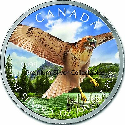 2015 Canada Bird of Prey Red Tail Hawk Colorized Coin 1 Ounce Pure Silver!