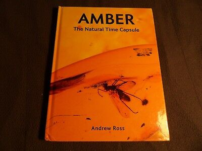 Amber The natural Time Capsule  Ross  2010  F