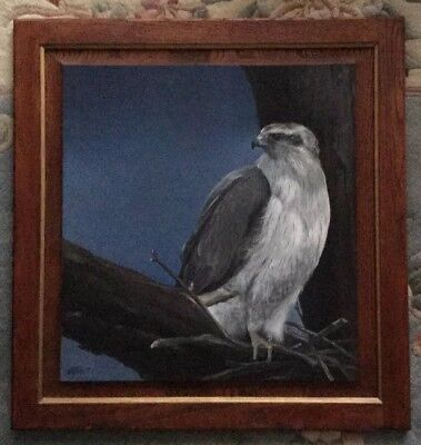 Original Painting On Board - Falcon Signed Stamm '89