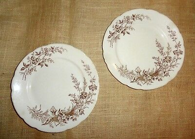 2  1800s Antique Vintage AESTHETIC Imperial Pottery BROWN & WHITE PLATES England