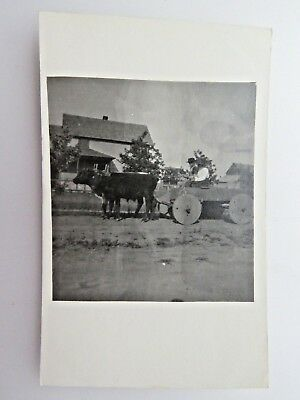 RPPC Antique Postcard Old Wagon With Wooden Wheels Driven By Oxen A1259