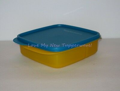 Tupperware Lunch-It® Divided Container & Seal Papaya & Peacock Blue New
