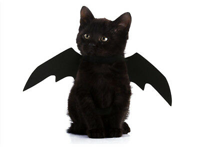 Halloween Pet Bat Wings Scary Cosplay Photo Props for Holiday Party Favor Shan