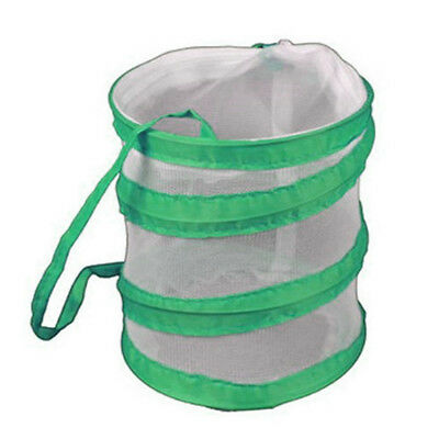 Monarch Butterfly Habitat Small Collapsible Insect Mesh For Kids Children Shan