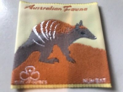 Girl Guides / Scouts Numbat 2