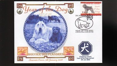 Year Of The Dog Stamp Illustrated Souvenir Cover, Bouvier Des Flandres 1