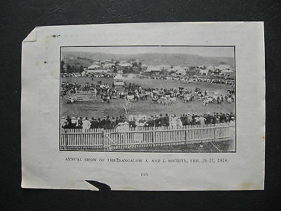 Annual Show Of The  Bangalow A & I Society 1918
