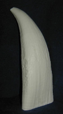 #10 (Imitation Replica) Whale Tooth for Display, Scrimshaw Engraving
