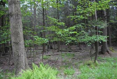 Great Opportunity/ Affordable Pocono Land