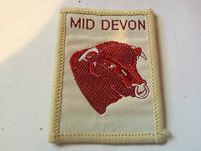 Girl Guides / Scouts County Mid Devon