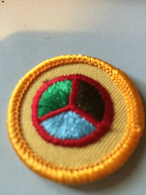 Girl Guides / Scouts Interest 2