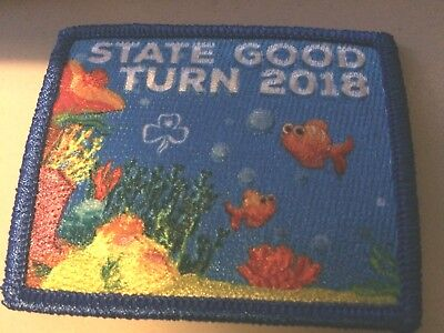 Girl Guides / Scouts State Good Turn